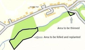 treesmap