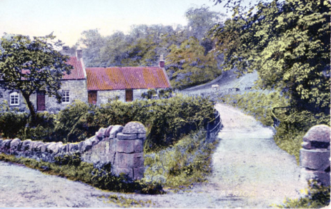 Africa Cottage